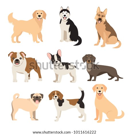 flat style dogs collection
