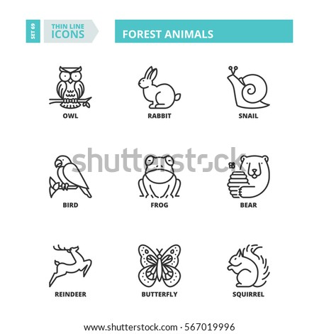 Flat symbols about forest animals. Thin line icons set.