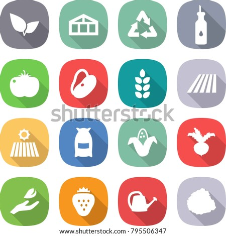 flat vector icon set - leafs vector, greenhouse, recycle, vegetable oil, tomato, beans, spike, field, flour, corn, beet, hand leaf, strawberry, watering can, pile of garbage