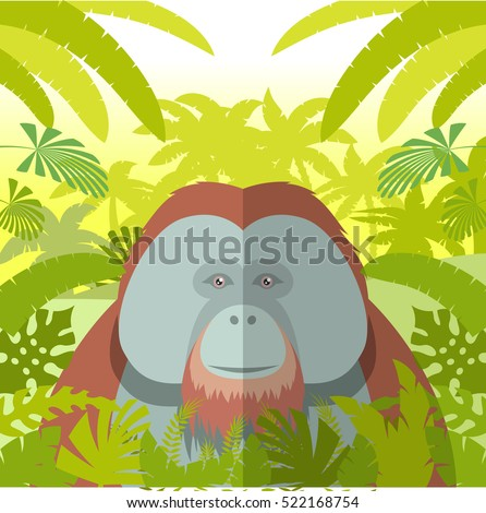 Flat Vector image of the Orangutan on the Jungle Background