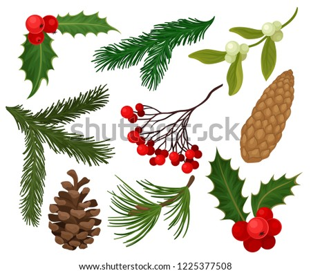 Flat vector set of Christmas plants. Holiday symbols. Holly berries, pine or fir cones, branch of mistletoe and coniferous trees