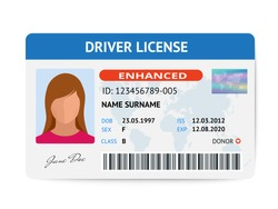Flat woman driver license plastic card template, id card vector illustration