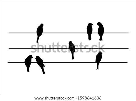 flock birds design vector