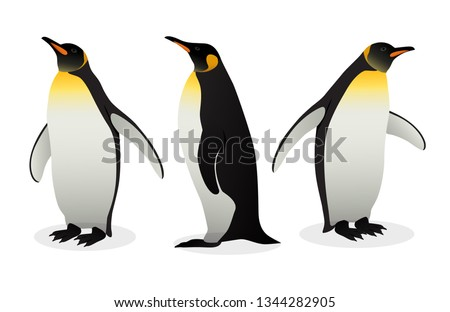 Flock Of Emperor Penguins on white background. Tallest And Heaviest Penguin Species. Antarctic Vector Illustration In Flat Style.