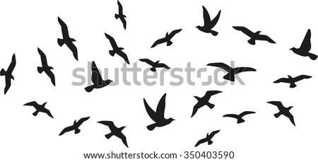 stock-vector-flock-of-flying-birds