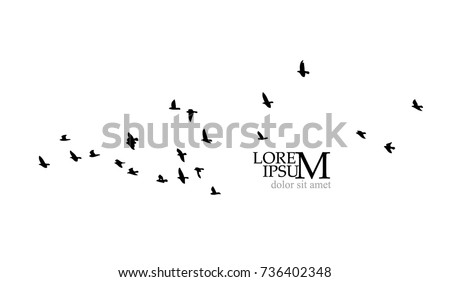 Flock of flying birds. Vector