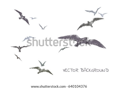 flock of seagulls vector hand