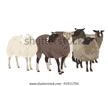 Line Drawing Of Sheep Face : Sheep logo images stock photos vectors shutterstock