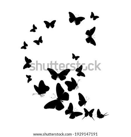 Flock of silhouette black butterflies on white background. Vector