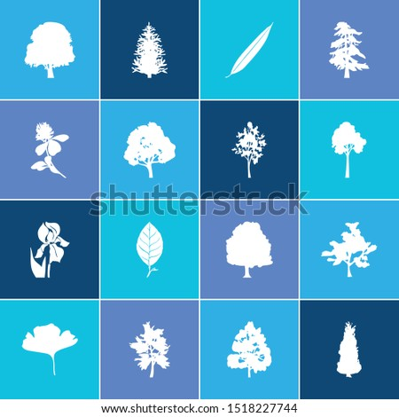 Flora icon set and clover flower with blackthorn tree, willow and maple tree. Wood related flora icon vector for web UI logo design