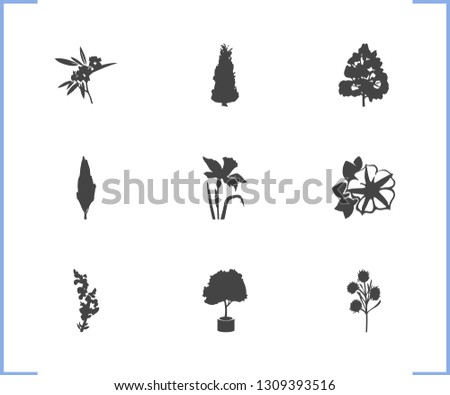 Flora icon set and snapdragon with daffodils, oleander, siren flower. Flora related flora icon vector for web UI logo design.