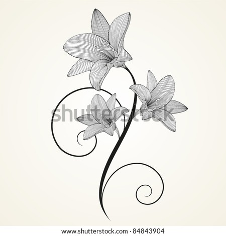 Floral background. Beautiful frame with flowers lily. Element for design.