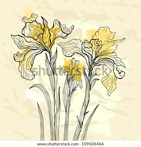 Floral background. Hand drawn flowers. Iris. Vector illustration.