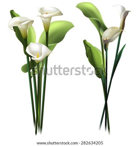 floral background set of