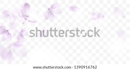 floral background with soft