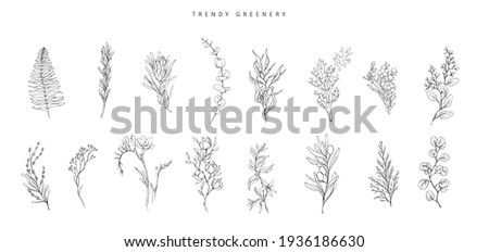 Floral branch. Hand drawn wedding herb, plant and monogram with elegant leaves for invitation save the date card design. Botanical rustic trendy greenery vector