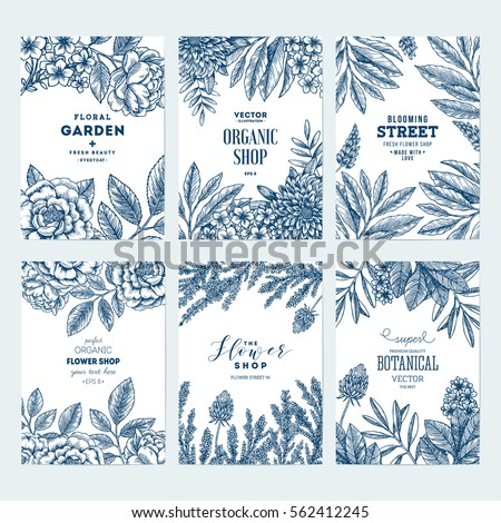 Floral card design templates. Flower frame collection. Vintage sketchy style plants. Vector illustration