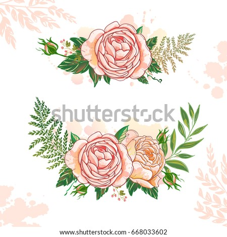 Floral Collection rose