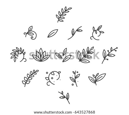 Floral Decoration Branch Leaf Plant Line  Stroke Icon Pictogram Symbol Set Collection