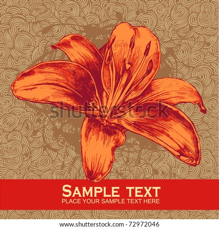 floral design element and hand-drawn doodle background, engraved retro style. vector illustration