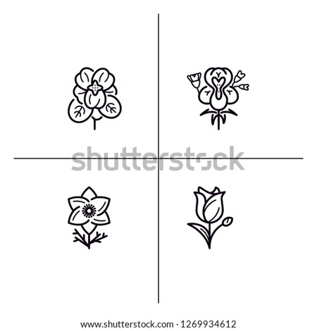 Floral design, flowers detailed linear outline icon set EPS 10 vector format. Transparent background. #1269934612