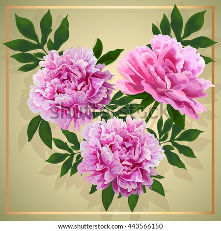 Floral design. Pink flowers peonies with leaves. #443566150