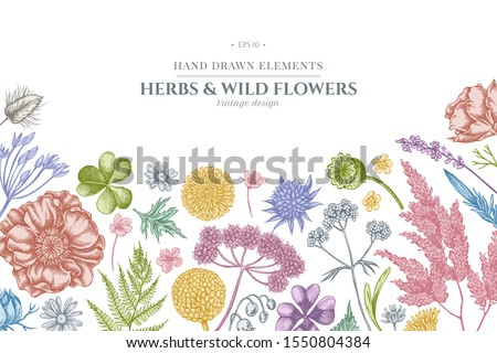floral design with pastel