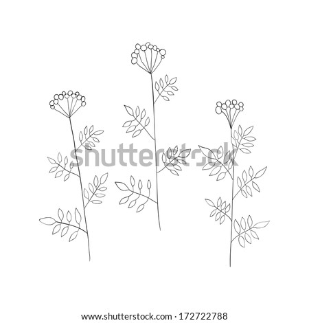 Floral elements. Grass. Vector illustration. #172722788