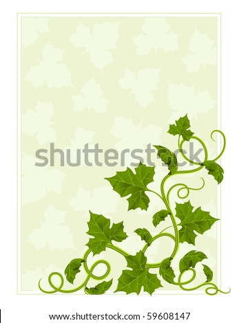 floral frame with willow and green leaf