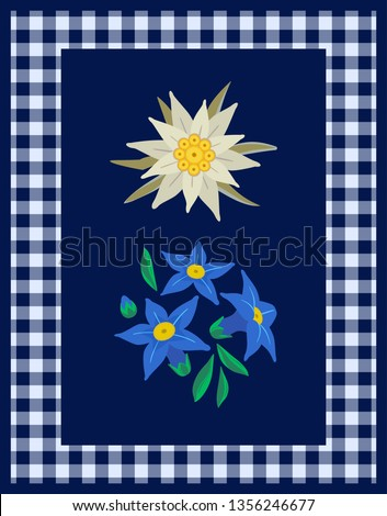 Floral hand drawn decorative design element with edelweiss flowers. Vector symbol of Alps. Mountain alpine flower cartoon decor frame. Oktoberfest holiday event celebration background illustration