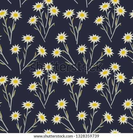 Floral hand drawn seamless pattern with edelweiss. Star shape national symbol of Alpes. Mountain alpine blossom plant cartoon illustration. High-mountainous silvery plant. Vector textured background