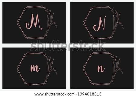 Floral hand drawn Tulip flower plant alphabet logo botanical frame design set m and n logo Foto stock ©