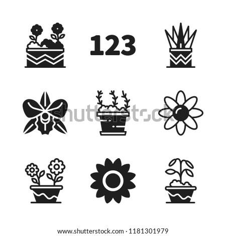 floral icon 9 floral vector