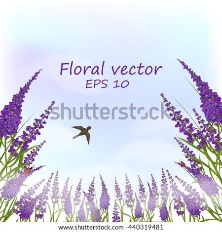 floral illustration  lavender