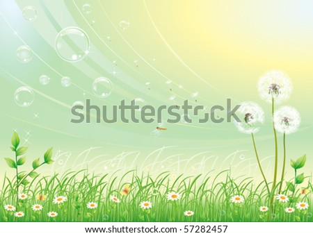 Floral meadow collection over green background