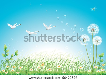 Floral meadow collection with swan - stock vector