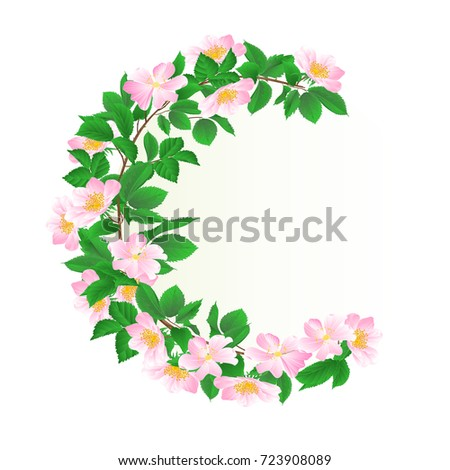 floral round  frame with wild