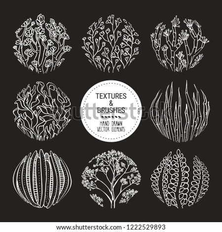 Floral round textures, subtropical plant ornaments. Botanical design elements for organic branding, invitation, greeting card, floral stickers and prints. Hand drawn subtropical patterns vector set.
