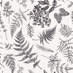 Floral seamless pattern in vintage style. Various leaves of ferns, blackberry and butterfly. Vector botanical illustration. Black and white.