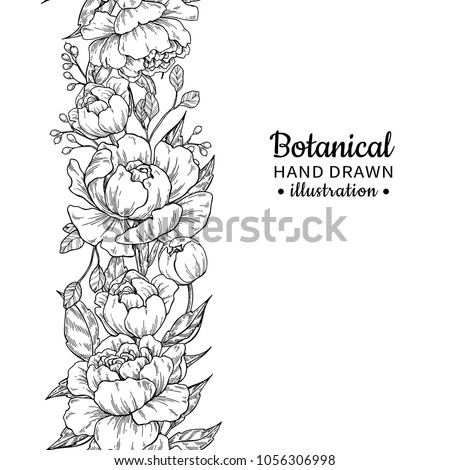 stock-vector-floral-seamless-vintage-border-vector-peony-and-roses-botanical-drawing-isolated-flower-sketch