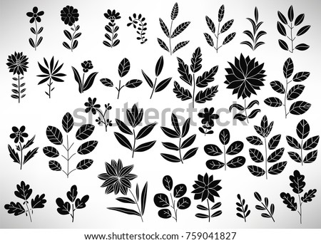 Floral Set of black hand drawn floral elements, tree branch, bush, plant, leaves, flowers, branches, petals isolated on white. Collection of flourish elements for design. Vector illustration.
