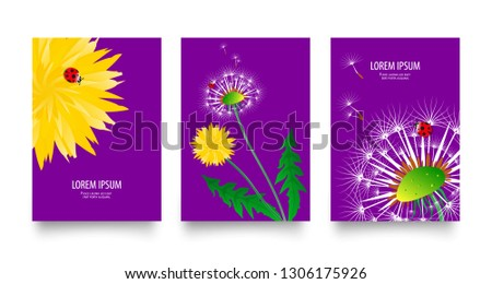 floral set of posters  flyers