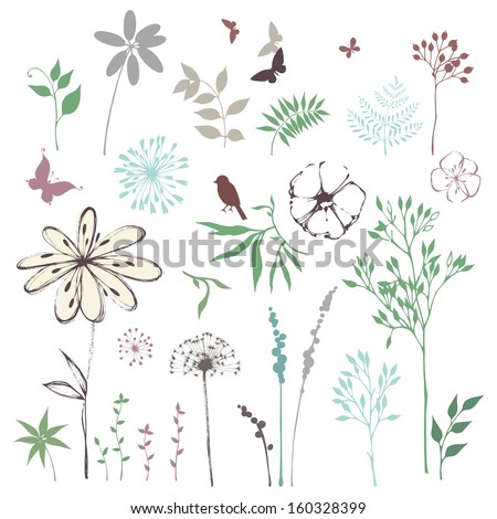 Floral set with leaves, flowers, dandelion, grass, bird and butterflies. Vector illustration.