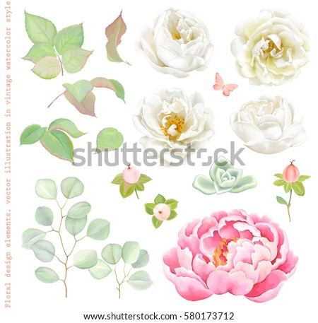 floral set with white roses