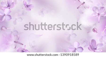 floral spring background with