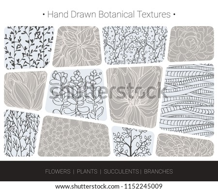 Floral vector textures. Botanical design elements for organic branding, wedding invitation, greeting card, fashion textile and floral prints. Hand drawn flower bloom, succulent, tree branch pattern.