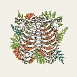 Floral vintage rib cage illustration. Floral anatomy. Vector illustration