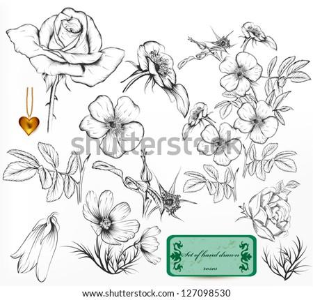 floral vintage vector