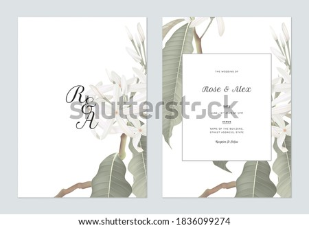 Floral wedding invitation card template design, Medicinal Kopsia flowers with leaves on white
