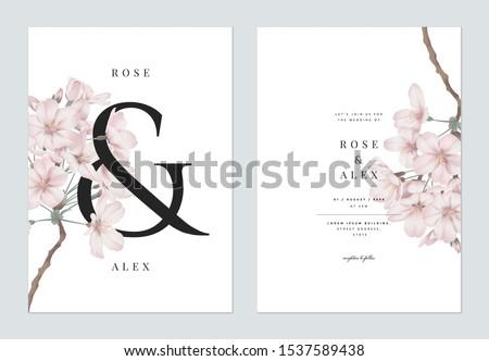Floral wedding invitation card template design, Somei Yoshino sakura flowers with ampersand lettering on white, pastel vintage theme